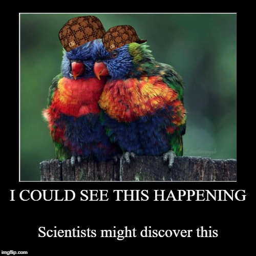 Bird week, a What_Is_A_Family_Undertale event | I COULD SEE THIS HAPPENING | Scientists might discover this | image tagged in funny,bird week,birds,scumbag,still a better love story than twilight,dashhopes | made w/ Imgflip demotivational maker