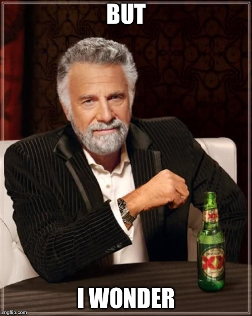The Most Interesting Man In The World Meme | BUT I WONDER | image tagged in memes,the most interesting man in the world | made w/ Imgflip meme maker