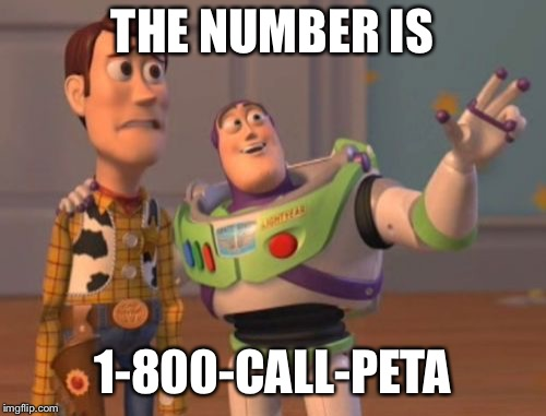 X, X Everywhere Meme | THE NUMBER IS 1-800-CALL-PETA | image tagged in memes,x,x everywhere,x x everywhere | made w/ Imgflip meme maker