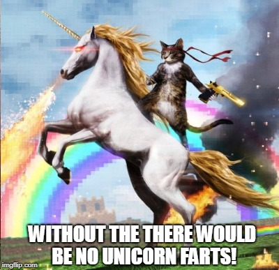 WITHOUT THE THERE WOULD BE NO UNICORN FARTS! | made w/ Imgflip meme maker