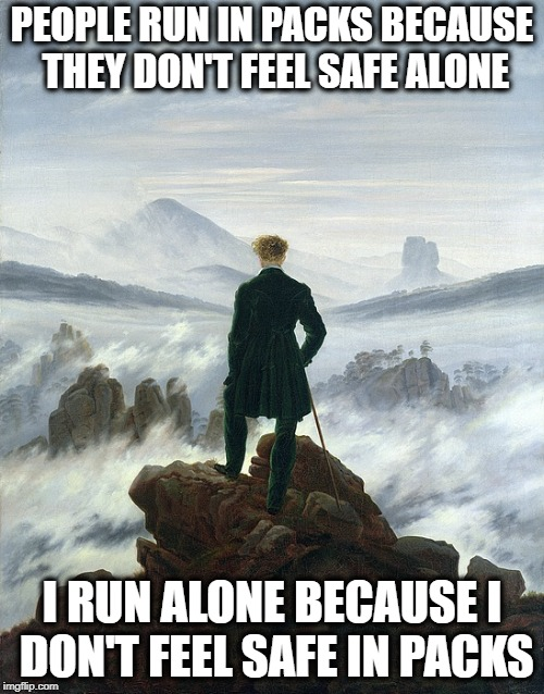 Loner Life | PEOPLE RUN IN PACKS BECAUSE THEY DON'T FEEL SAFE ALONE I RUN ALONE BECAUSE I DON'T FEEL SAFE IN PACKS | image tagged in loner,introvert | made w/ Imgflip meme maker