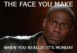 Kevin Hart Meme | THE FACE YOU MAKE WHEN YOU REALIZE IT'S MONDAY | image tagged in memes,kevin hart the hell | made w/ Imgflip meme maker