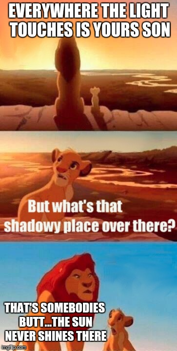Simba Shadowy Place Meme | EVERYWHERE THE LIGHT TOUCHES IS YOURS SON THAT'S SOMEBODIES BUTT...THE SUN NEVER SHINES THERE | image tagged in memes,simba shadowy place | made w/ Imgflip meme maker