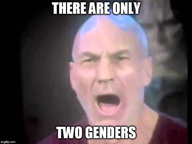 This should answer the great question | THERE ARE ONLY TWO GENDERS | image tagged in picard lights,gender,sjw | made w/ Imgflip meme maker