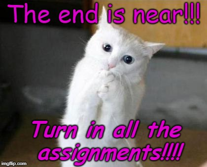 The end is near!!! Turn in all the assignments!!!! | image tagged in the end | made w/ Imgflip meme maker