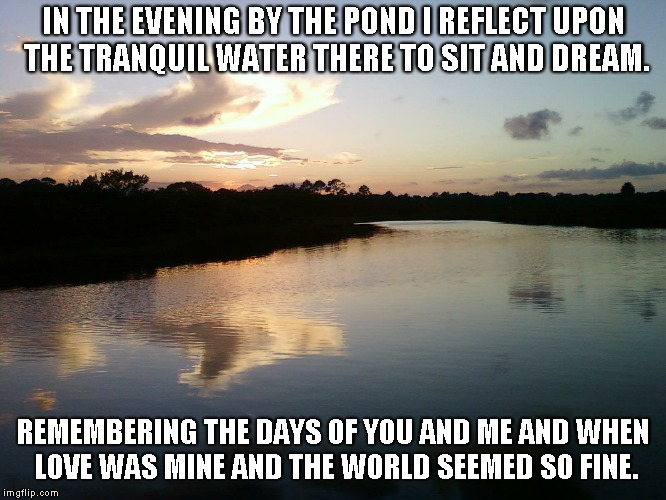 By the Pond | IN THE EVENING BY THE POND I REFLECT UPON THE TRANQUIL WATER THERE TO SIT AND DREAM. REMEMBERING THE DAYS OF YOU AND ME AND WHEN LOVE WAS MI | image tagged in evenings,ponds,dreams,love,remembering | made w/ Imgflip meme maker