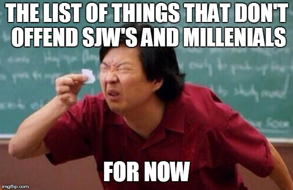 Small List | THE LIST OF THINGS THAT DON'T OFFEND SJW'S AND MILLENIALS FOR NOW | image tagged in small list | made w/ Imgflip meme maker