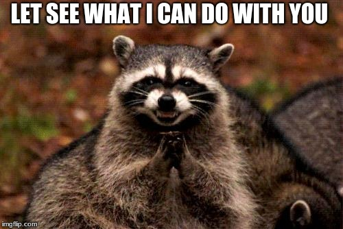 Evil Plotting Raccoon | LET SEE WHAT I CAN DO WITH YOU | image tagged in memes,evil plotting raccoon | made w/ Imgflip meme maker