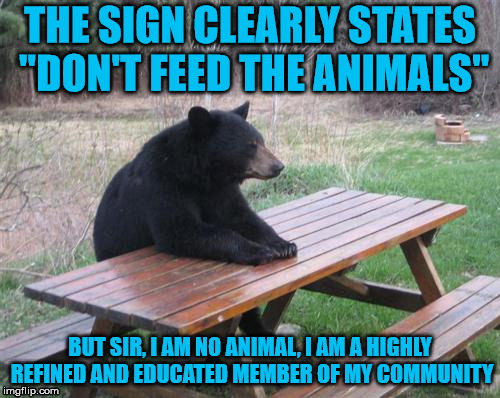 "Bad Luck Bear Meme | THE SIGN CLEARLY STATES ""DON'T FEED THE ANIMALS"" BUT SIR, I AM NO ANIMAL, I AM A HIGHLY REFINED AND EDUCATED MEMBER OF MY COMMUNITY 