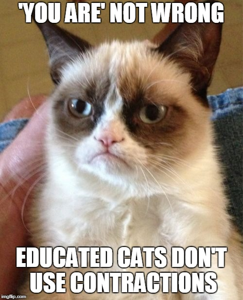 Grumpy Cat Meme | 'YOU ARE' NOT WRONG EDUCATED CATS DON'T USE CONTRACTIONS | image tagged in memes,grumpy cat | made w/ Imgflip meme maker