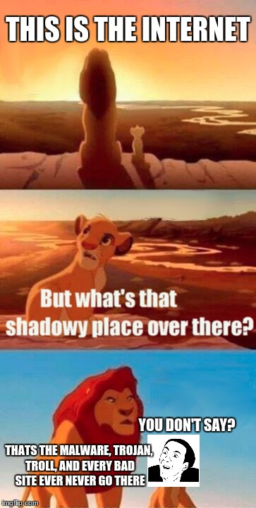 This is very obvious.  | THIS IS THE INTERNET THATS THE MALWARE, TROJAN, TROLL, AND EVERY BAD SITE EVER NEVER GO THERE YOU DON'T SAY? | image tagged in memes,simba shadowy place,you don't say | made w/ Imgflip meme maker