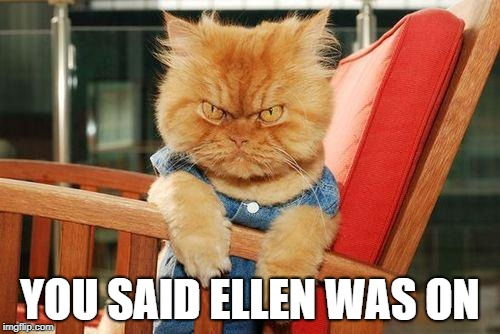 mad cat | YOU SAID ELLEN WAS ON | image tagged in mad cat | made w/ Imgflip meme maker