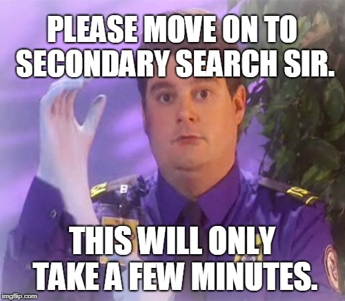 PLEASE MOVE ON TO SECONDARY SEARCH SIR. THIS WILL ONLY TAKE A FEW MINUTES. | made w/ Imgflip meme maker