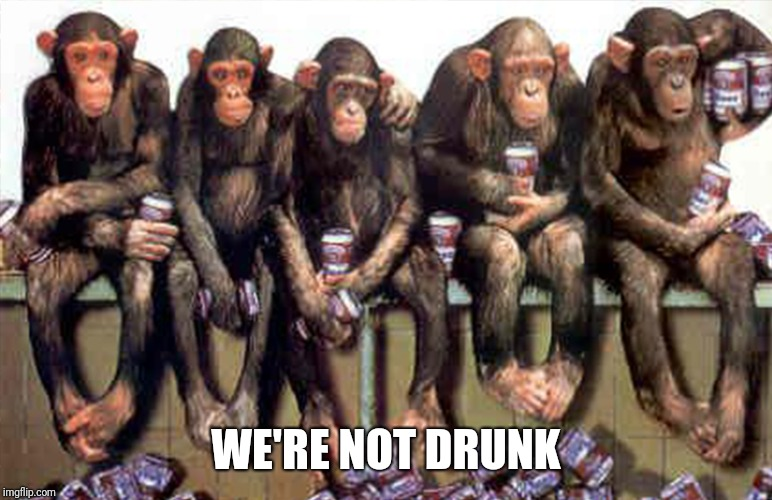 WE'RE NOT DRUNK | made w/ Imgflip meme maker