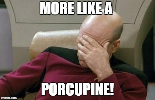 Captain Picard Facepalm Meme | MORE LIKE A PORCUPINE! | image tagged in memes,captain picard facepalm | made w/ Imgflip meme maker