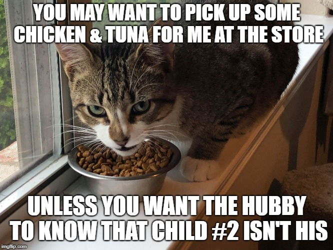 Blackmail Cat knows all...  | YOU MAY WANT TO PICK UP SOME CHICKEN & TUNA FOR ME AT THE STORE UNLESS YOU WANT THE HUBBY TO KNOW THAT CHILD #2 ISN'T HIS | image tagged in blackmail cat,chicken,tuna,child 2,milkman | made w/ Imgflip meme maker