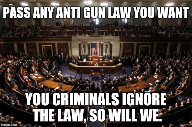 congress | PASS ANY ANTI GUN LAW YOU WANT YOU CRIMINALS IGNORE THE LAW, SO WILL WE. | image tagged in congress | made w/ Imgflip meme maker