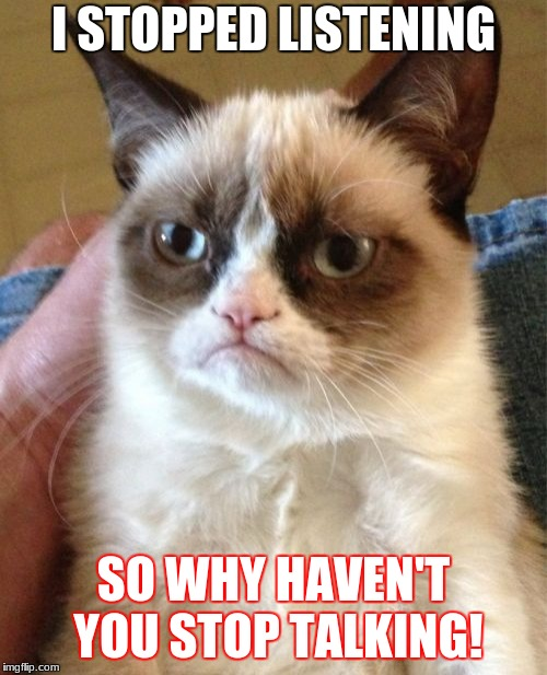 Grumpy Cat Meme | I STOPPED LISTENING SO WHY HAVEN'T YOU STOP TALKING! | image tagged in memes,grumpy cat | made w/ Imgflip meme maker