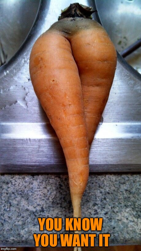 carrot legs | YOU KNOW YOU WANT IT | image tagged in carrot legs | made w/ Imgflip meme maker