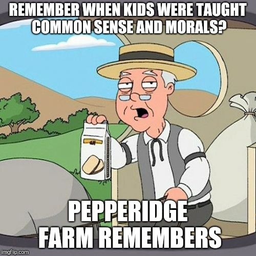 Pepperidge Farm Remembers Meme | REMEMBER WHEN KIDS WERE TAUGHT COMMON SENSE AND MORALS? PEPPERIDGE FARM REMEMBERS | image tagged in memes,pepperidge farm remembers | made w/ Imgflip meme maker