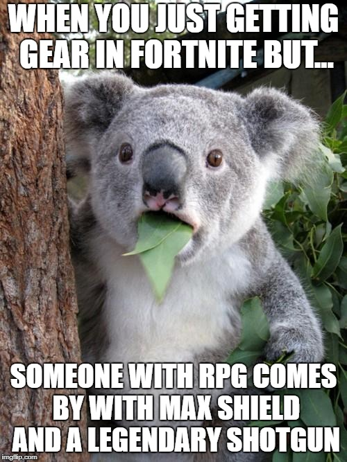 OP Person vs Skrub | WHEN YOU JUST GETTING GEAR IN FORTNITE BUT... SOMEONE WITH RPG COMES BY WITH MAX SHIELD AND A LEGENDARY SHOTGUN | image tagged in memes,surprised koala | made w/ Imgflip meme maker