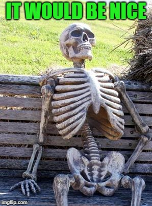 Waiting Skeleton Meme | IT WOULD BE NICE | image tagged in memes,waiting skeleton | made w/ Imgflip meme maker
