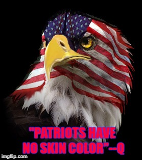 """PATRIOTS HAVE NO SKIN COLOR""--Q 