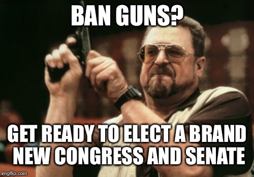 Am I The Only One Around Here Meme | BAN GUNS? GET READY TO ELECT A BRAND NEW CONGRESS AND SENATE | image tagged in memes,am i the only one around here | made w/ Imgflip meme maker