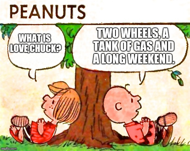 Peanuts Charlie Brown Peppermint Patty | WHAT IS LOVE,CHUCK? TWO WHEELS, A TANK OF GAS AND A LONG WEEKEND. | image tagged in peanuts charlie brown peppermint patty | made w/ Imgflip meme maker