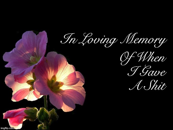 In Loving Memory |  Of When I Gave A Shit; In Loving Memory | image tagged in idgaf,done,memes,finals,school | made w/ Imgflip meme maker