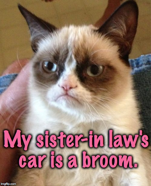 New Car Model --Vileda!!!! | My sister-in law's car is a broom. | image tagged in memes,grumpy cat | made w/ Imgflip meme maker