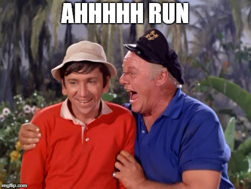 gilligan | AHHHHH RUN | image tagged in gilligan | made w/ Imgflip meme maker