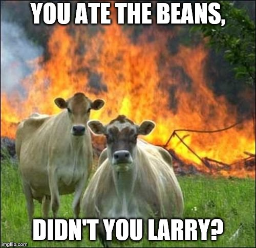 Evil Cows Meme | YOU ATE THE BEANS, DIDN'T YOU LARRY? | image tagged in memes,evil cows | made w/ Imgflip meme maker