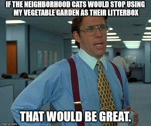 @%$# cats | IF THE NEIGHBORHOOD CATS WOULD STOP USING MY VEGETABLE GARDEN AS THEIR LITTERBOX THAT WOULD BE GREAT. | image tagged in memes,that would be great,garden,litter box | made w/ Imgflip meme maker