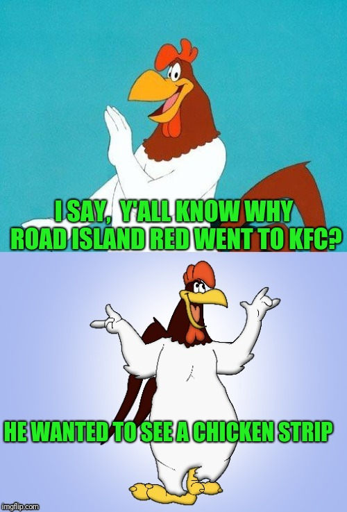Hubba hubba | I SAY,  Y'ALL KNOW WHY ROAD ISLAND RED WENT TO KFC? HE WANTED TO SEE A CHICKEN STRIP | image tagged in foghorn joke | made w/ Imgflip meme maker
