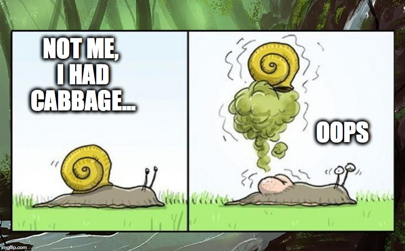 NOT ME, I HAD CABBAGE... OOPS | made w/ Imgflip meme maker