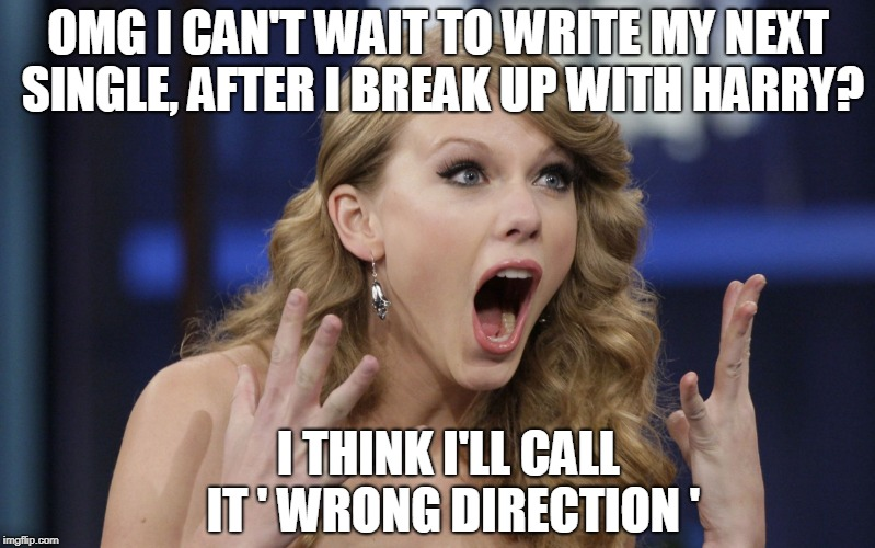 Swift's New Single!?! | OMG I CAN'T WAIT TO WRITE MY NEXT SINGLE, AFTER I BREAK UP WITH HARRY? I THINK I'LL CALL IT ' WRONG DIRECTION ' | image tagged in taylor swift | made w/ Imgflip meme maker