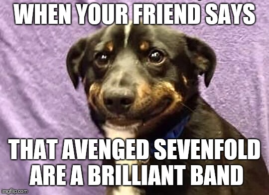 WHEN YOUR FRIEND SAYS THAT AVENGED SEVENFOLD ARE A BRILLIANT BAND | image tagged in cringe laugh puppy,memes | made w/ Imgflip meme maker