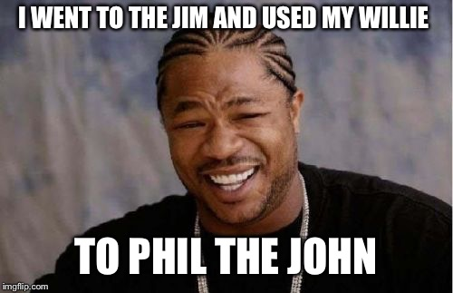 Yo Dawg Heard You Meme | I WENT TO THE JIM AND USED MY WILLIE TO PHIL THE JOHN | image tagged in memes,yo dawg heard you | made w/ Imgflip meme maker