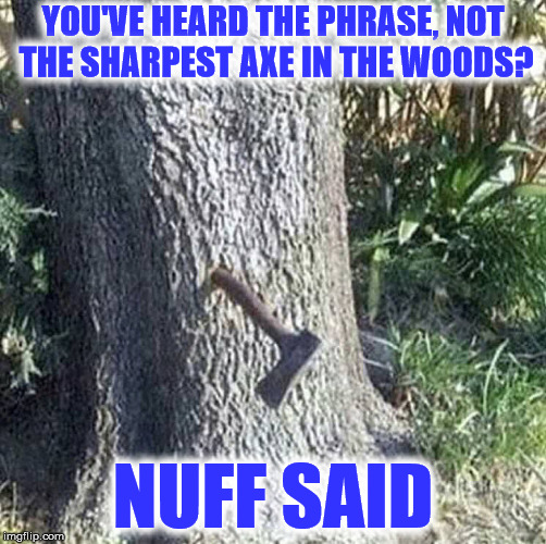 I just find it amazing the thrower got it to stick in the tree |  YOU'VE HEARD THE PHRASE, NOT THE SHARPEST AXE IN THE WOODS? NUFF SAID | image tagged in axe | made w/ Imgflip meme maker