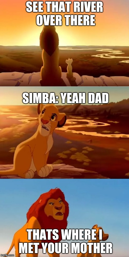 lion king shadowy place | SEE THAT RIVER OVER THERE THATS WHERE I MET YOUR MOTHER SIMBA: YEAH DAD | image tagged in lion king shadowy place | made w/ Imgflip meme maker