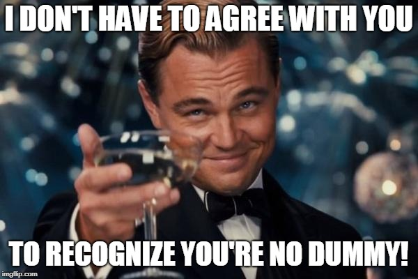 Leonardo Dicaprio Cheers Meme | I DON'T HAVE TO AGREE WITH YOU TO RECOGNIZE YOU'RE NO DUMMY! | image tagged in memes,leonardo dicaprio cheers | made w/ Imgflip meme maker
