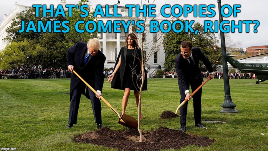 Tree? But there's only one... :) |  THAT'S ALL THE COPIES OF JAMES COMEY'S BOOK, RIGHT? | image tagged in memes,donald trump,james comey,books,trees | made w/ Imgflip meme maker