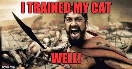 Sparta Leonidas Meme | I TRAINED MY CAT WELL! | image tagged in memes,sparta leonidas | made w/ Imgflip meme maker