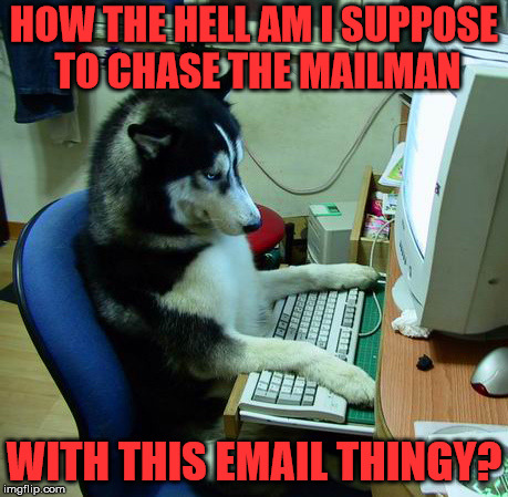 I Have No Idea What I Am Doing | HOW THE HELL AM I SUPPOSE TO CHASE THE MAILMAN WITH THIS EMAIL THINGY? | image tagged in memes,i have no idea what i am doing | made w/ Imgflip meme maker