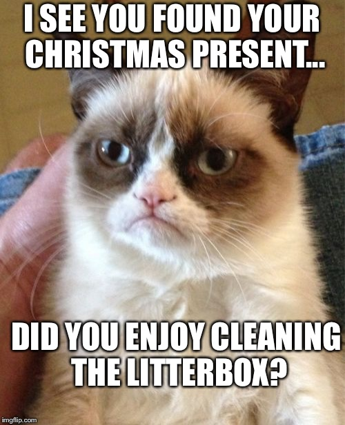 Grumpy Cat Meme | I SEE YOU FOUND YOUR CHRISTMAS PRESENT... DID YOU ENJOY CLEANING THE LITTERBOX? | image tagged in memes,grumpy cat | made w/ Imgflip meme maker
