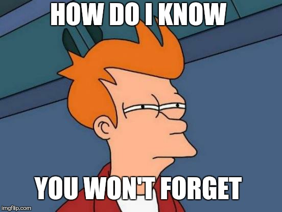 Futurama Fry Meme | HOW DO I KNOW YOU WON'T FORGET | image tagged in memes,futurama fry | made w/ Imgflip meme maker