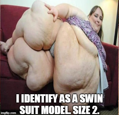 I IDENTIFY AS A SWIN SUIT MODEL. SIZE 2. | made w/ Imgflip meme maker
