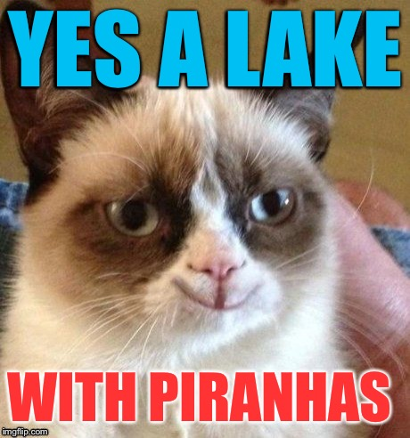 grumpy smile | YES A LAKE WITH PIRANHAS | image tagged in grumpy smile | made w/ Imgflip meme maker