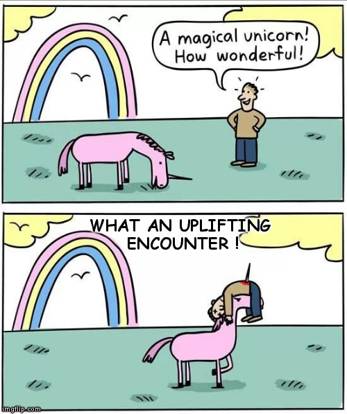 An Uplifting Experience | WHAT AN UPLIFTING ENCOUNTER ! | image tagged in magical unicorn,uplifting,encounter,new age | made w/ Imgflip meme maker